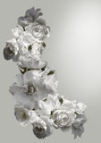 Den härliga vertikala ramen med en bukett av vita rosor med regn tappar Svartvit toningbild Arkivbilder