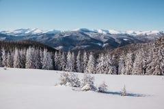 Den härliga vintern landscape Royaltyfri Foto