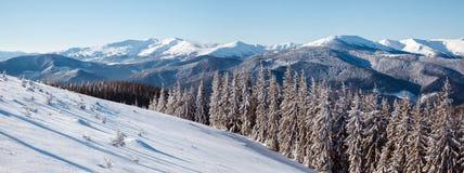 Den härliga vintern landscape Arkivfoto