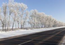 Den härliga vintern landscape Arkivfoton