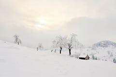 Den härliga vintern landscape Arkivbild