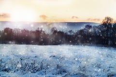 Den härliga vintern landscape Royaltyfri Bild