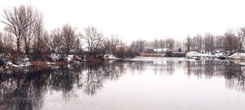 Den härliga vintern landscape Träd reflekterade i vattnet av sjön royaltyfri bild