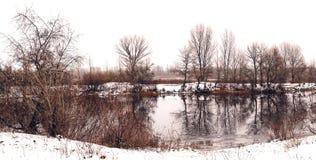 Den härliga vintern landscape Träd reflekterade i vattnet av sjön royaltyfri fotografi