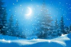 Den härliga vintern landskap med snow täckte trees arkivbild