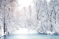 Den härliga vintern landskap med snow täckte trees lyckligt nytt år glad jul fotografering för bildbyråer