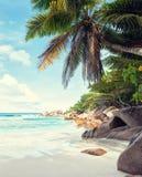 Den härliga vita sandiga stranden som omges av granit, vaggar och kokosnötpalmträd diguela seychelles tonad bild arkivfoto