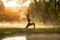 Den härliga yogakvinnan i morgonen på den varma våren parkerar Royaltyfri Fotografi