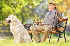 Den höga gentlemannen som placeras på bänk med hans hund som in kopplar av, parkerar Arkivbild