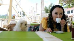 Den höga kvinnan sitter med hennes förtjusande husdjur - den vita hundpekinesen i ett utomhus- kafé för sommar arkivfilmer