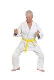 Den höga mannen i karate poserar Fotografering för Bildbyråer