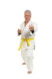 Den höga mannen i karate poserar Arkivfoto