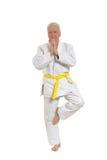 Den höga mannen i karate poserar Arkivbilder