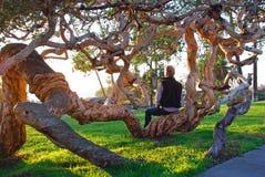 Den höga mannen som tycker om solnedgångsikten i Heisler, parkerar, Laguna Beach, CA Arkivfoto