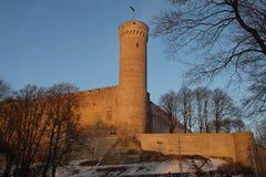 Det medeltida baltiska slottet och högväxt eller Pikk Hermann står hög Arkivfoto