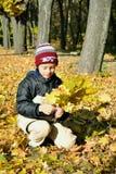 den höstliga pojketrädgården samlar in leavesyellow Royaltyfria Foton