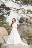 Den h?rliga bruden som n?ra poserar, vaggar mot bakgrund bergen arkivfoto