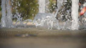 Den h?rliga springbrunnen i staden parkerar i sommar stock video