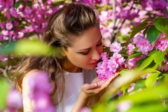 Den h?rliga unga flickan sniffar rosa blommor som blommar sakura i v?rtr?dg?rd arkivfoton