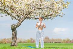 Den h?rliga unga kvinnan ?va yoga n?ra blomningtr?d p? parkerar fotografering för bildbyråer