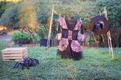 Den halloween garneringen - spindel och häxa Royaltyfria Bilder