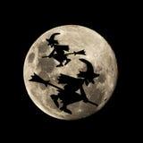 Den Hallowen häxan flyger i månen Royaltyfri Foto