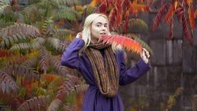 Den halva längdståenden av den unga kvinnlign i hösten parkerar med färgrika sidor royaltyfria bilder