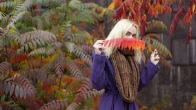 Den halva längdståenden av den unga kvinnlign i hösten parkerar med färgrika sidor fotografering för bildbyråer
