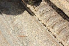 Den Hampi Vittala tempelväggen som snider med, fattar borrade storleksanpassade minimala hål Arkivfoto