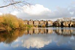 Den Hampstead heden parkerar royaltyfri bild