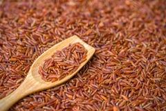 Den har en mild nötliknande anstrykning, är mer seg och mer näringsrik än vita ris Fotografering för Bildbyråer