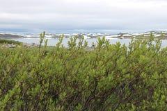 Den Hardangervidda platån i den Hallingskarvet nationalparken, Norge, Europa, med sjön Ustevatn Royaltyfri Bild