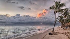 Den Hawaii ?n g?mma i handflatan stranden Turkoshav och bl? himmel Palmtr?d s?tter p? land den tropiska loppkusten f?r semestern  arkivbilder