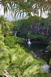 den hawaii ön maui pools sakrala sju Arkivbild