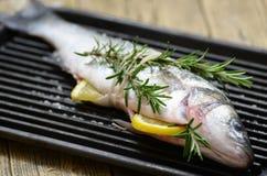 fisk på en grilla Royaltyfri Bild