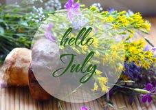 Den Hello Juli hälsningen på en sommar blommar buketten, och stensopp plocka svamp bakgrund Sommartidbegrepp Royaltyfria Foton