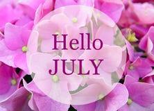 Den Hello Juli hälsningen på naturlig rosa vanlig hortensia blommar bakgrund sommar för snäckskal för sand för bakgrundsbegreppsr Fotografering för Bildbyråer