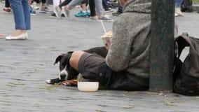 Den hemlösa fattiga mannen med en hund tigger för övergående folk och väntar på mynt stock video