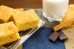 Den hemlagade caken med choklad och mjölkar royaltyfri fotografi