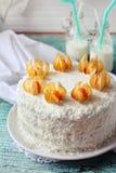 Den hemlagade kakan dekorerade med den vinterkörsbäret och kokosnöten Arkivbild