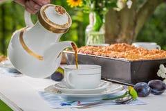 Den hemlagade kakan med plommonet tjänade som med kaffe i solig dag arkivbilder