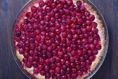 Den hemlagade organiska körsbärsröda pajefterrätten som är klar att äta, stänger sig upp Cherry Tart arkivbild