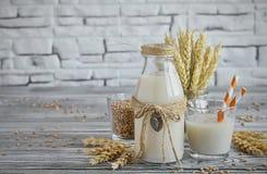 Den hemlagade strikt vegetarian mjölkar av spirat vete Royaltyfri Foto