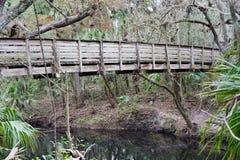 Den Hillsborough floden parkerar Royaltyfri Bild