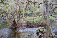Den Hillsborough floden parkerar Arkivbild