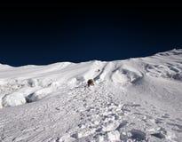 Den Himalaja steigen - Nepal Lizenzfreie Stockbilder