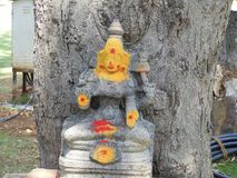 Den hinduiska gudinnan under trädet parkerar in royaltyfria foton