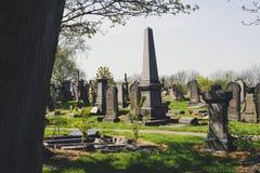 Den historiska cementeryen i natur parkerar royaltyfri bild