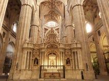 Den historiska domkyrkan av Salamanca royaltyfri bild