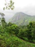 In den Hochländern von Sri Lanka Lizenzfreie Stockfotos